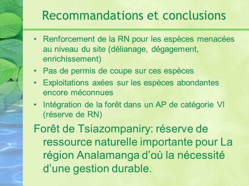 Recommandations et conclusions