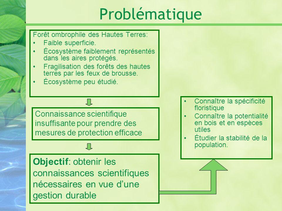 Problématique Forêt ombrophile des Hautes Terres: Faible superficie. Écosystème faiblement représentés dans les aires protégés.