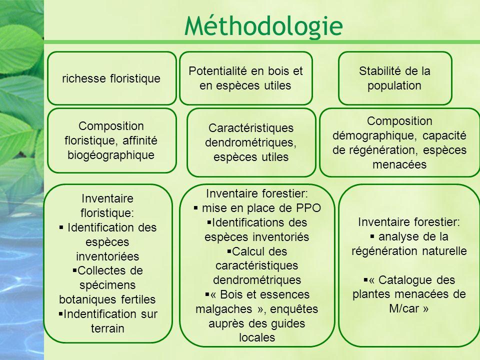 Méthodologie richesse floristique