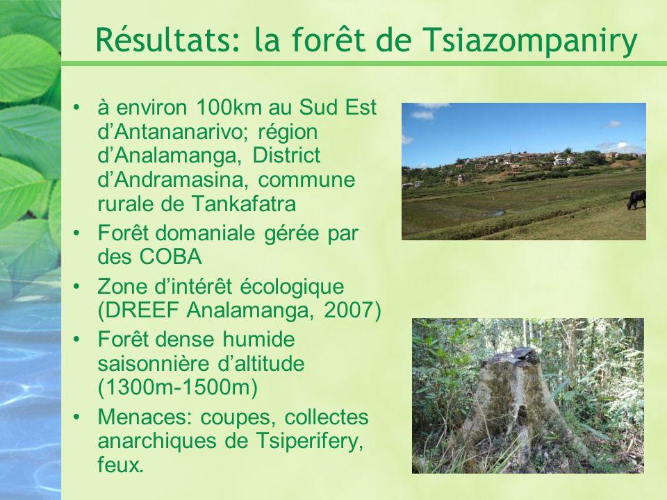 Résultats: la forêt de Tsiazompaniry