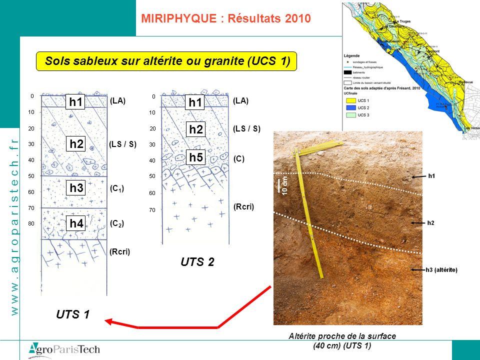 Altérite proche de la surface (40 cm) (UTS 1)
