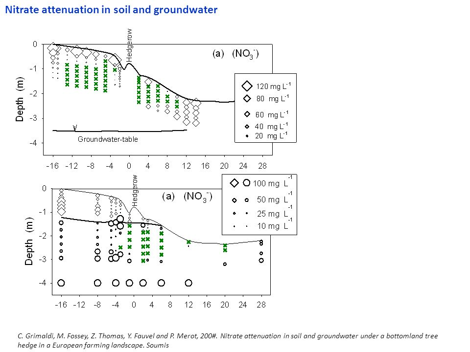 Nitrate attenuation in soil and groundwater