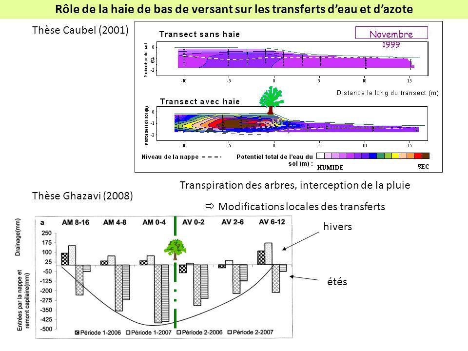 Rôle de la haie de bas de versant sur les transferts d'eau et d'azote