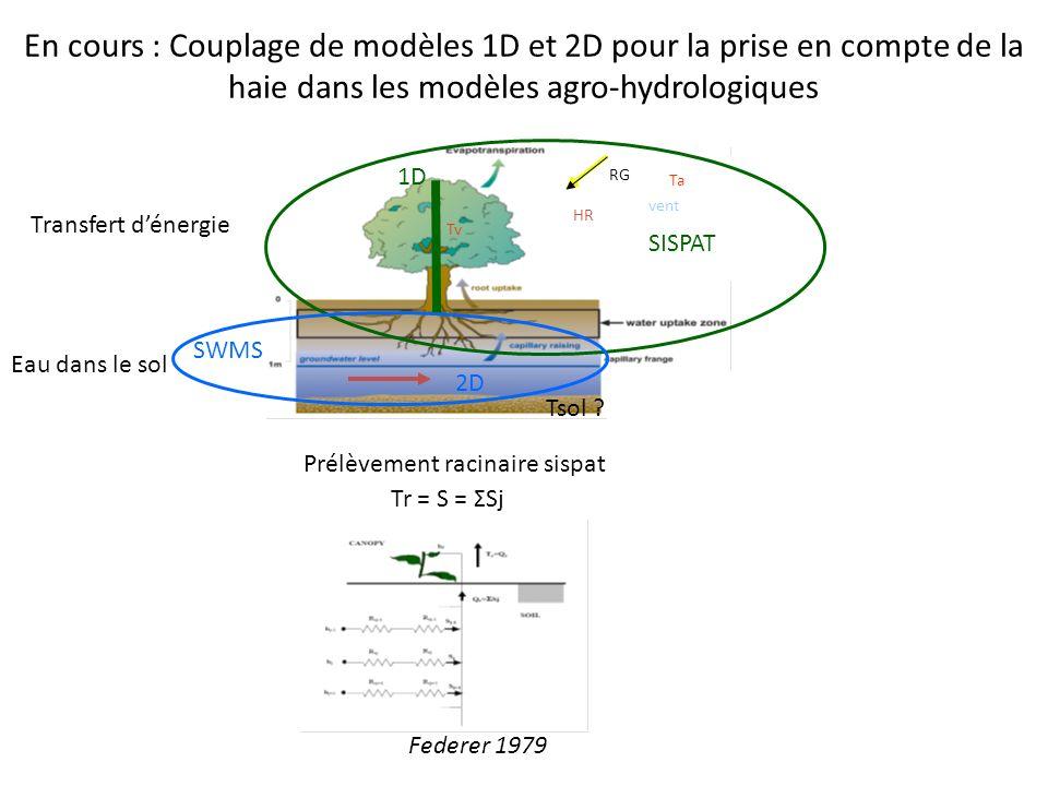 En cours : Couplage de modèles 1D et 2D pour la prise en compte de la haie dans les modèles agro-hydrologiques