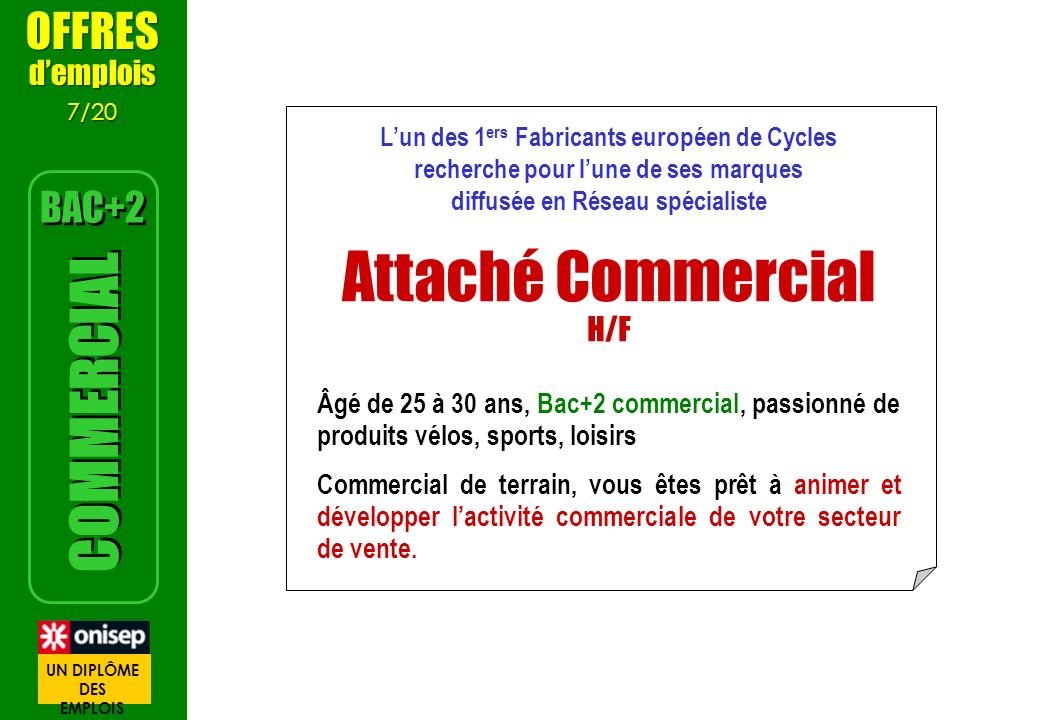 Attaché Commercial H/F