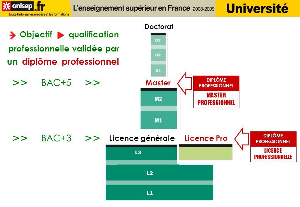 Université >> >> >> >> BAC+5 BAC+3