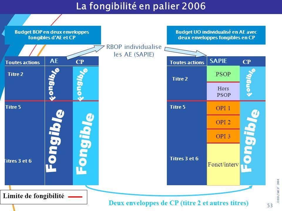 La fongibilité en palier 2006