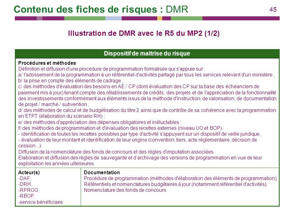 Contenu des fiches de risques : DMR
