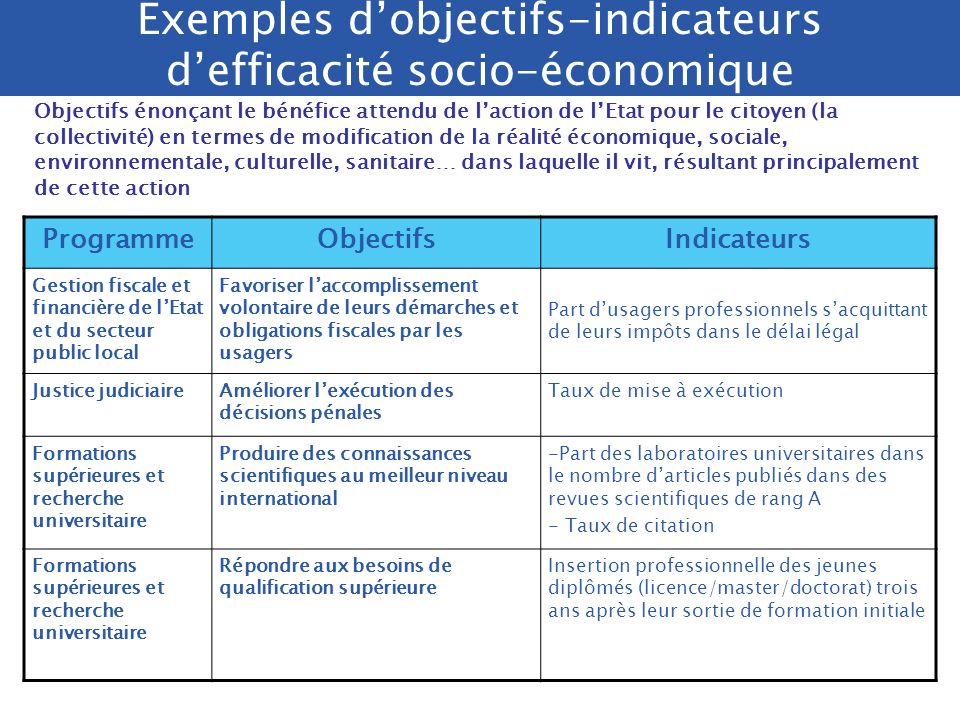 Exemples d'objectifs-indicateurs d'efficacité socio-économique