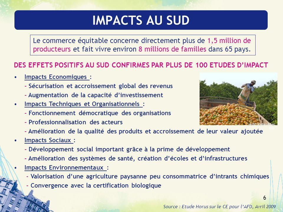 IMPACTS AU SUD