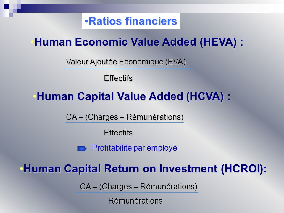 Human Economic Value Added (HEVA) :