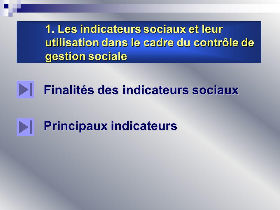 Finalités des indicateurs sociaux Principaux indicateurs