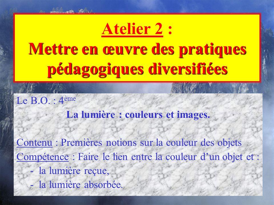 Atelier 2 : Mettre en œuvre des pratiques pédagogiques diversifiées
