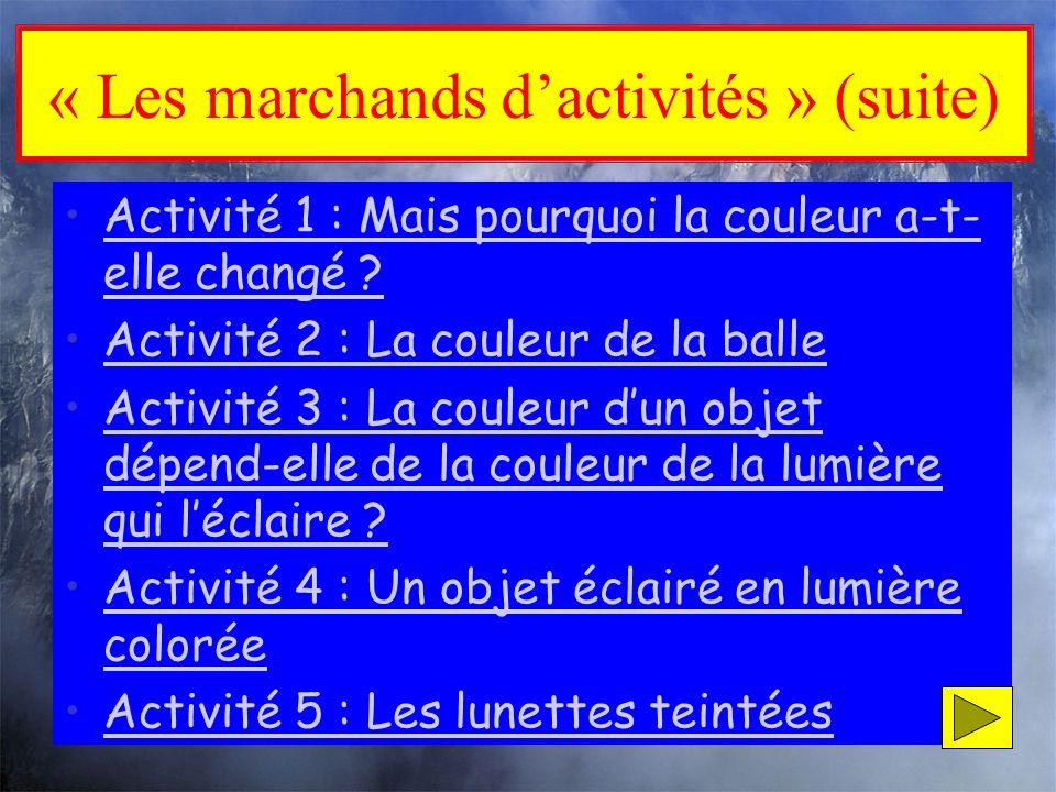 « Les marchands d'activités » (suite)