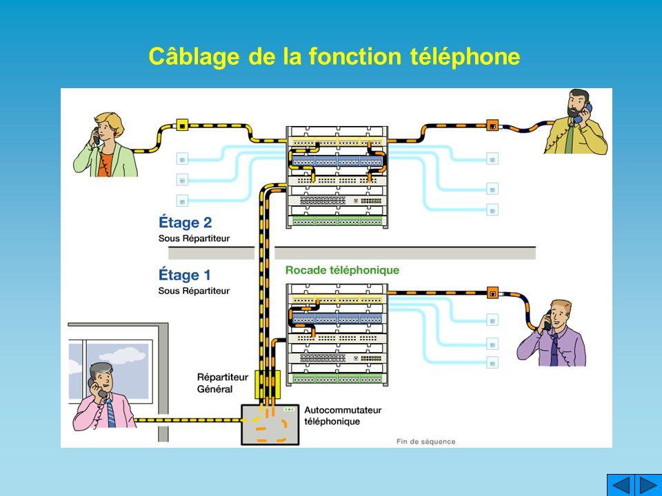 Câblage de la fonction téléphone