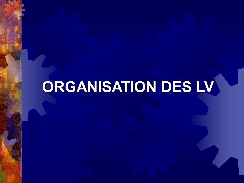 ORGANISATION DES LV