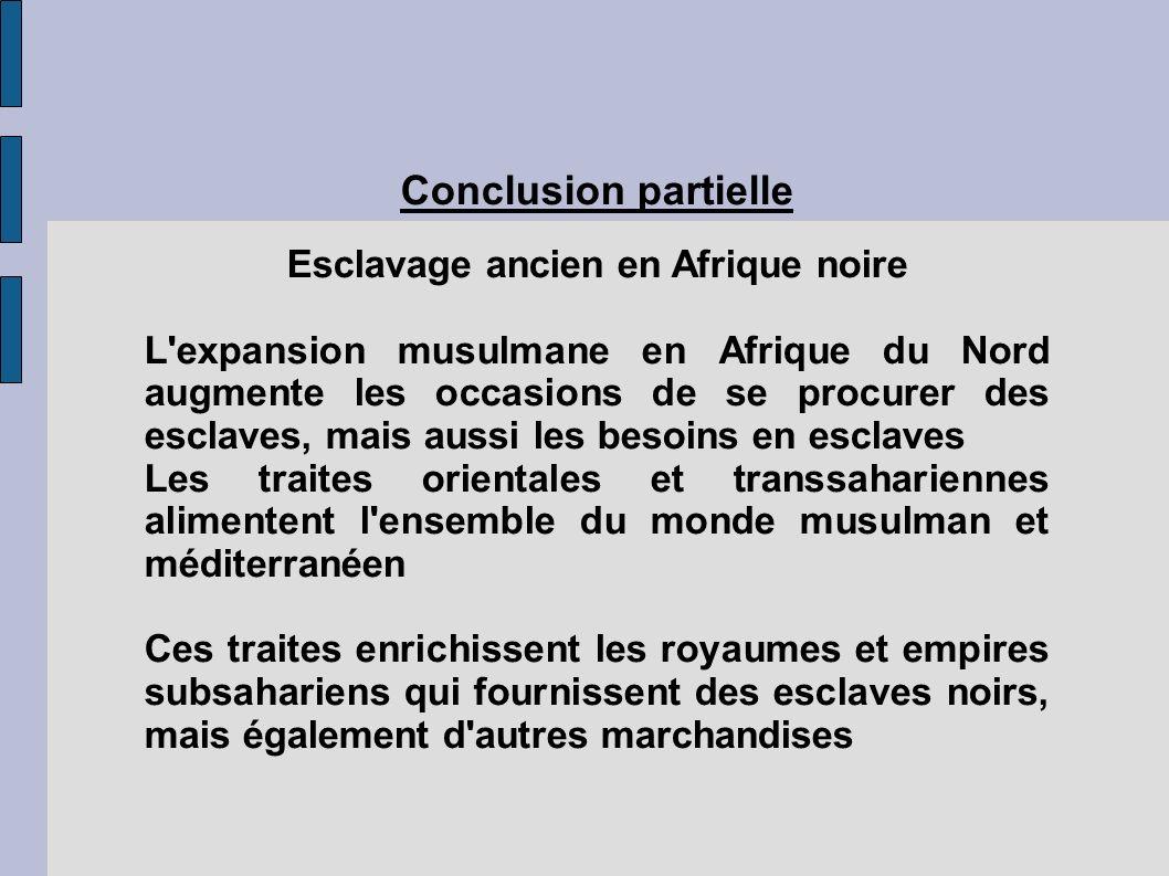Esclavage ancien en Afrique noire