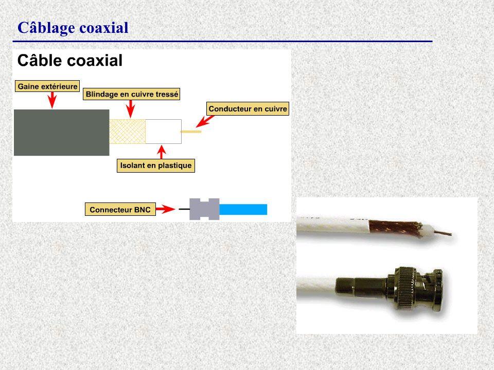 Câblage coaxial