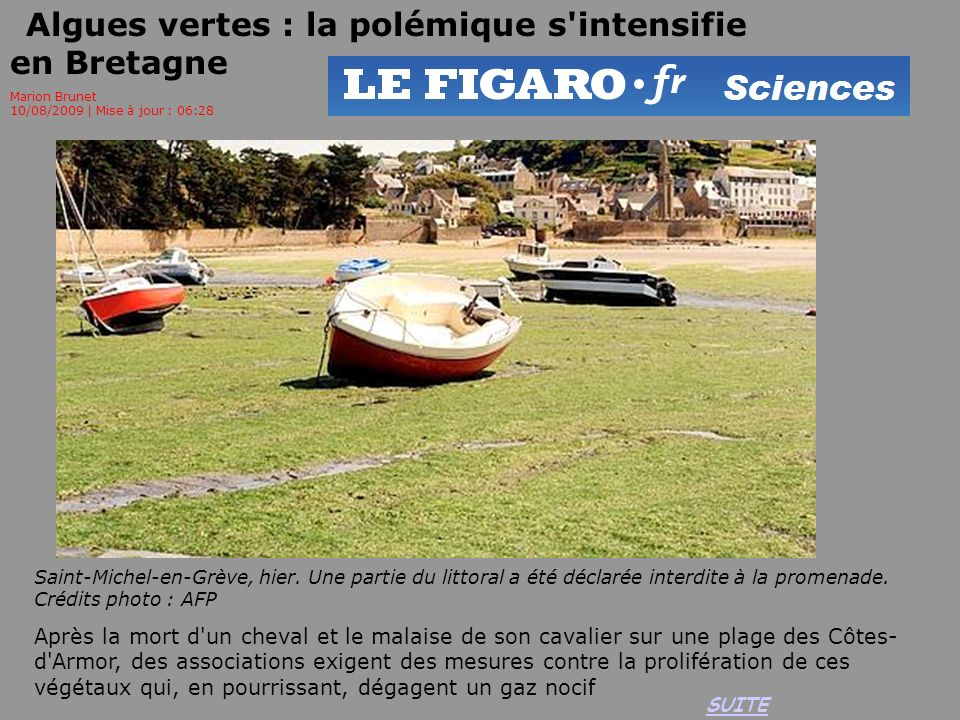 Algues vertes : la polémique s intensifie en Bretagne