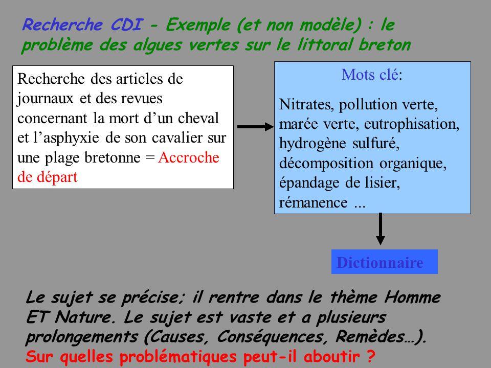 Recherche CDI - Exemple (et non modèle) : le problème des algues vertes sur le littoral breton
