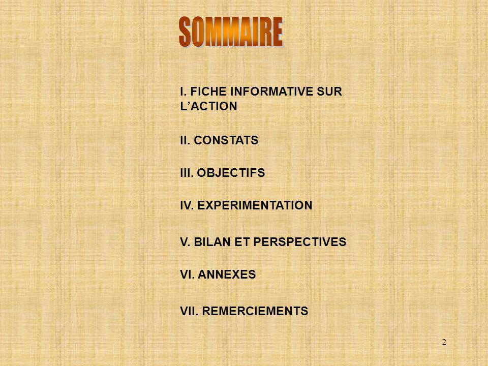 SOMMAIRE I. FICHE INFORMATIVE SUR L'ACTION II. CONSTATS III. OBJECTIFS