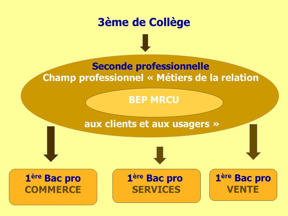 3ème de Collège Seconde professionnelle