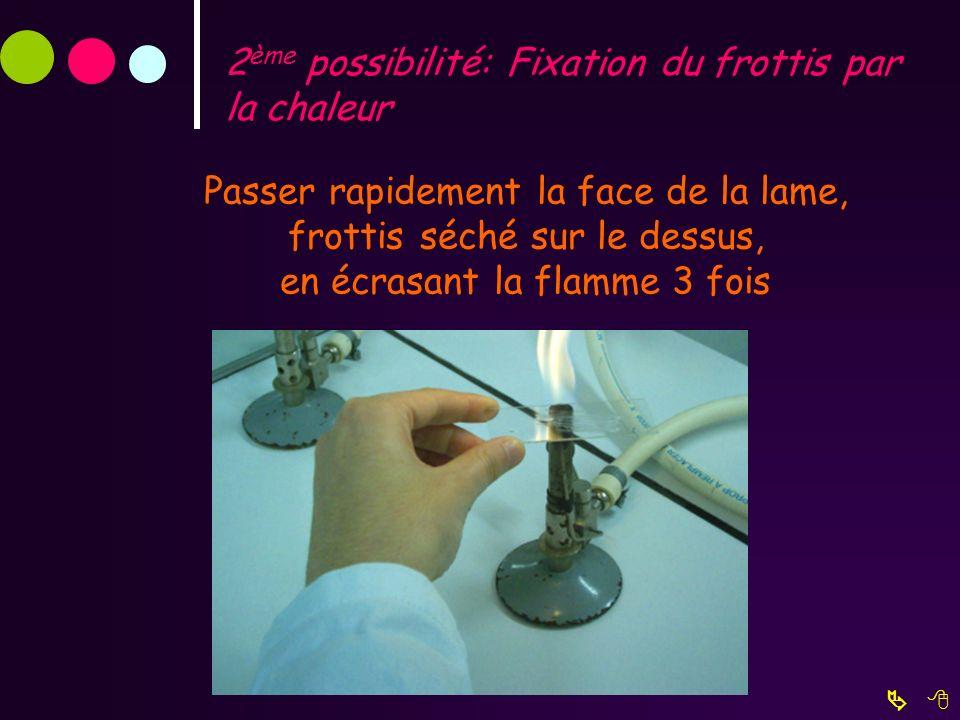 2ème possibilité: Fixation du frottis par la chaleur