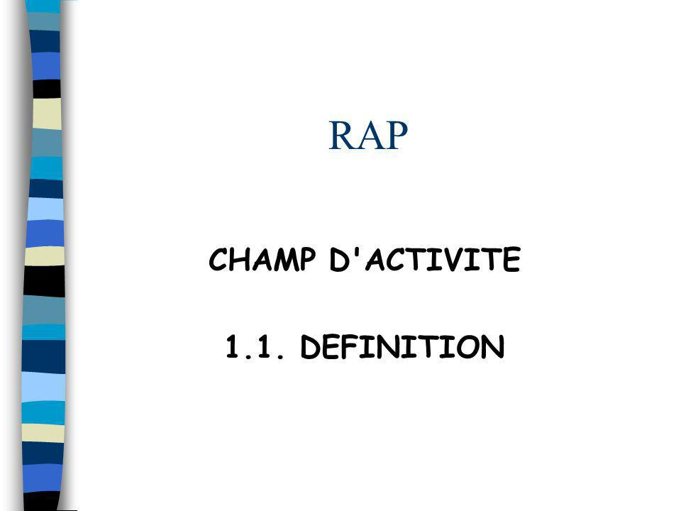RAP CHAMP D ACTIVITE 1.1. DEFINITION Réf P2