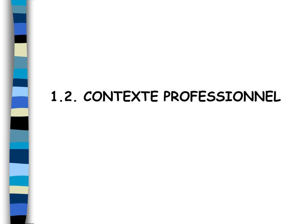 1.2. CONTEXTE PROFESSIONNEL