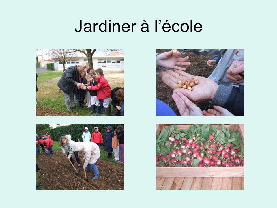 Jardiner à l'école