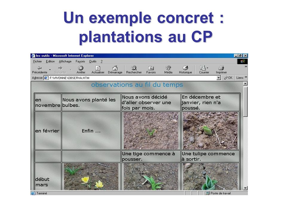 Un exemple concret : plantations au CP