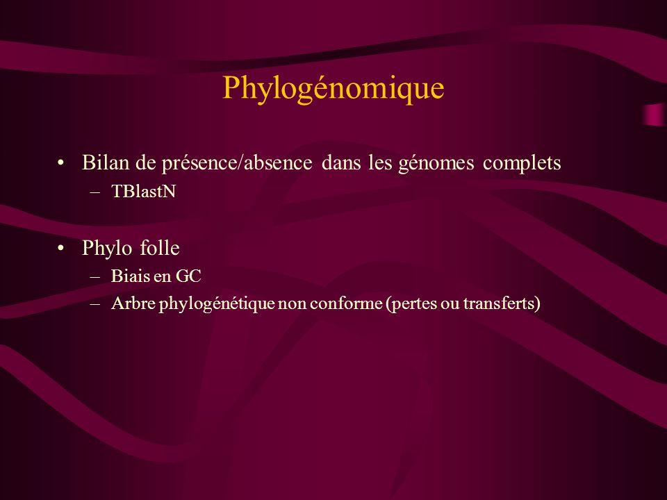 Phylogénomique Bilan de présence/absence dans les génomes complets