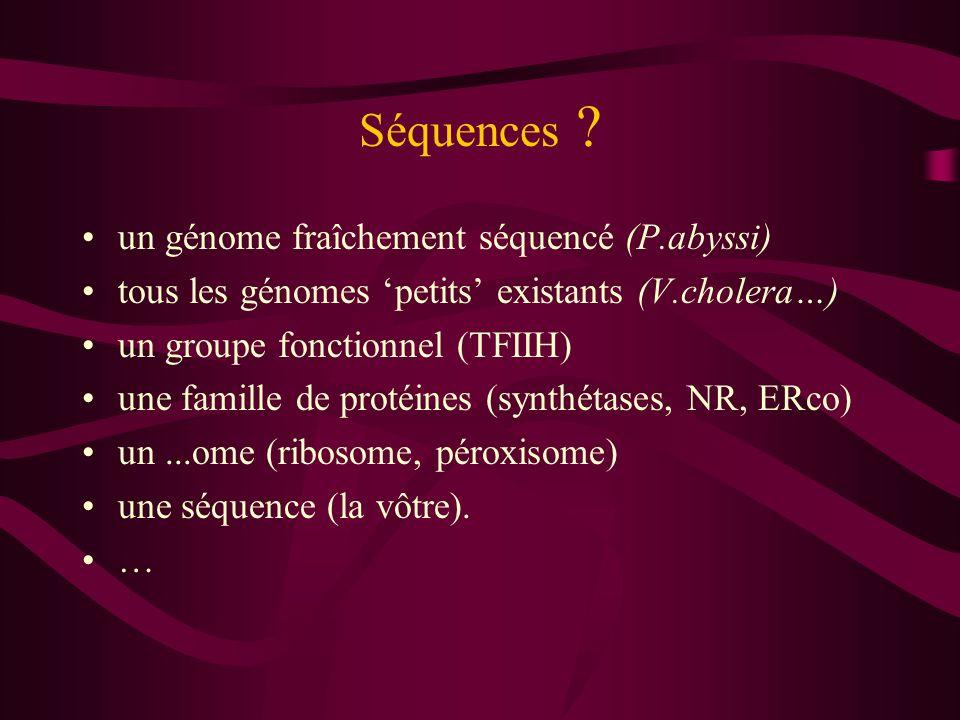 Séquences un génome fraîchement séquencé (P.abyssi)
