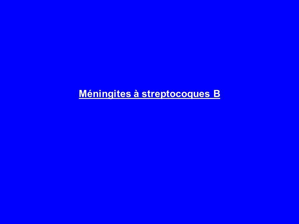 Méningites à streptocoques B