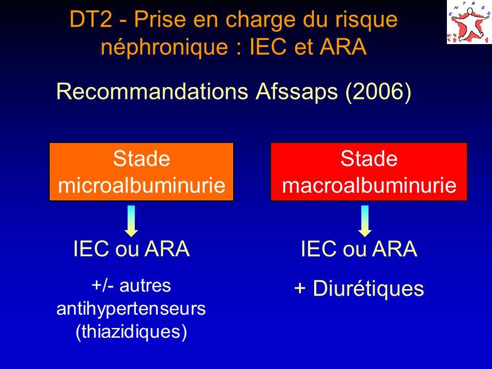 DT2 - Prise en charge du risque néphronique : IEC et ARA Recommandations Afssaps (2006)