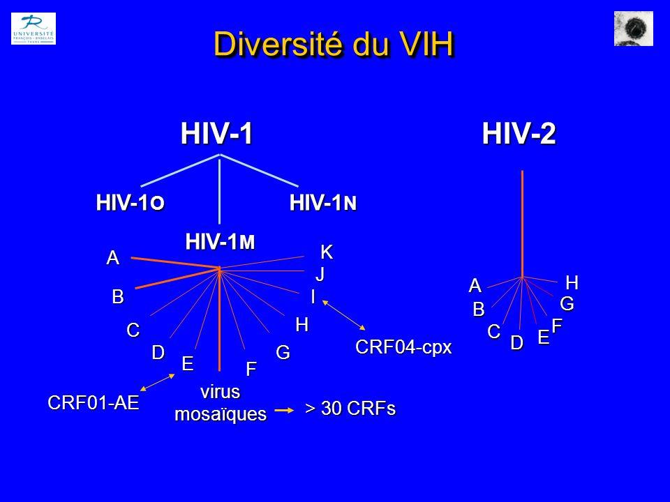 Diversité du VIH HIV-1 HIV-2 HIV-1O HIV-1M HIV-1N A C virus mosaïques