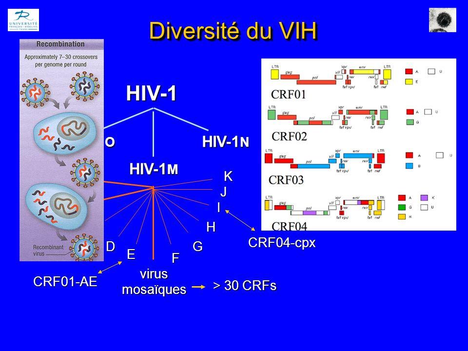 Diversité du VIH HIV-1 HIV-1O HIV-1M HIV-1N A C virus mosaïques B D E