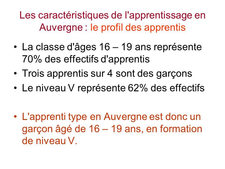 Les caractéristiques de l apprentissage en Auvergne : le profil des apprentis