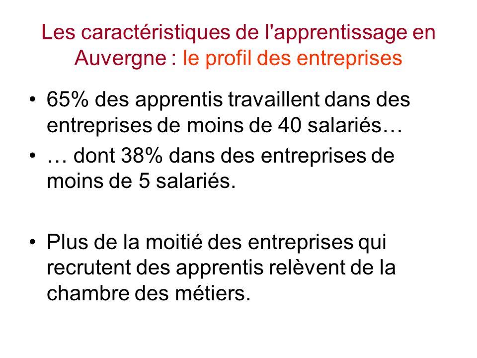 Les caractéristiques de l apprentissage en Auvergne : le profil des entreprises