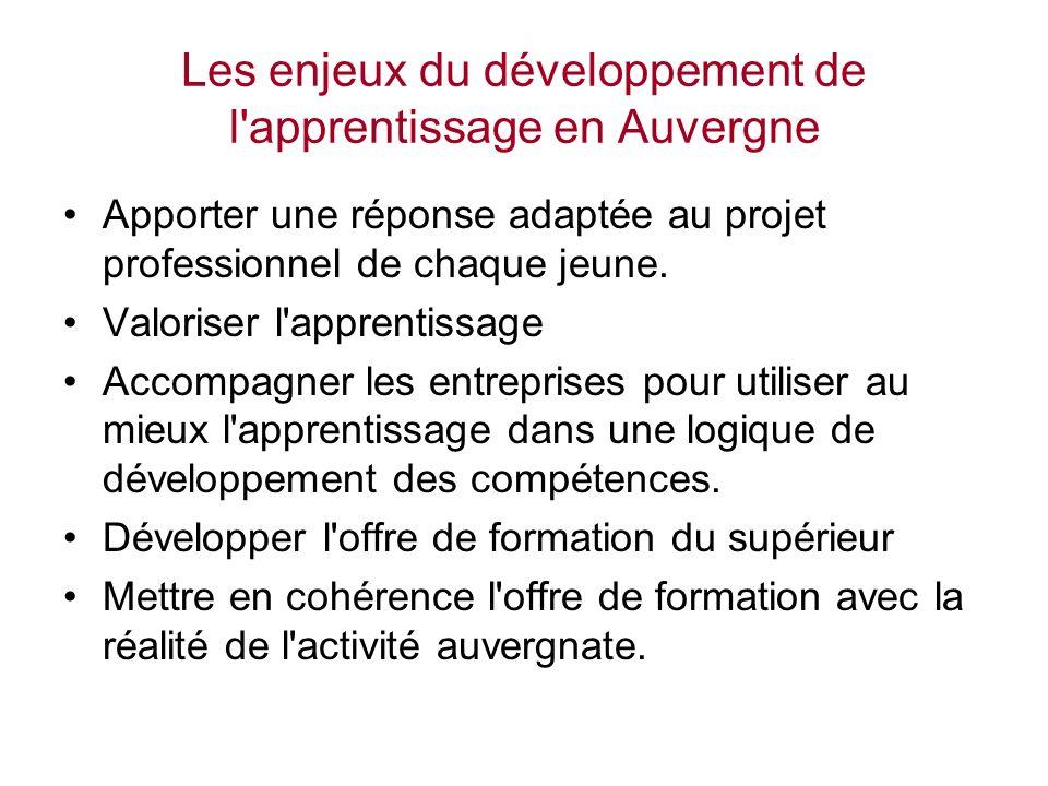 Les enjeux du développement de l apprentissage en Auvergne