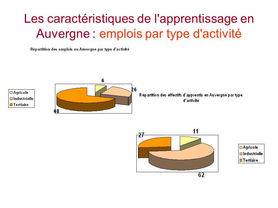 Les caractéristiques de l apprentissage en Auvergne : emplois par type d activité
