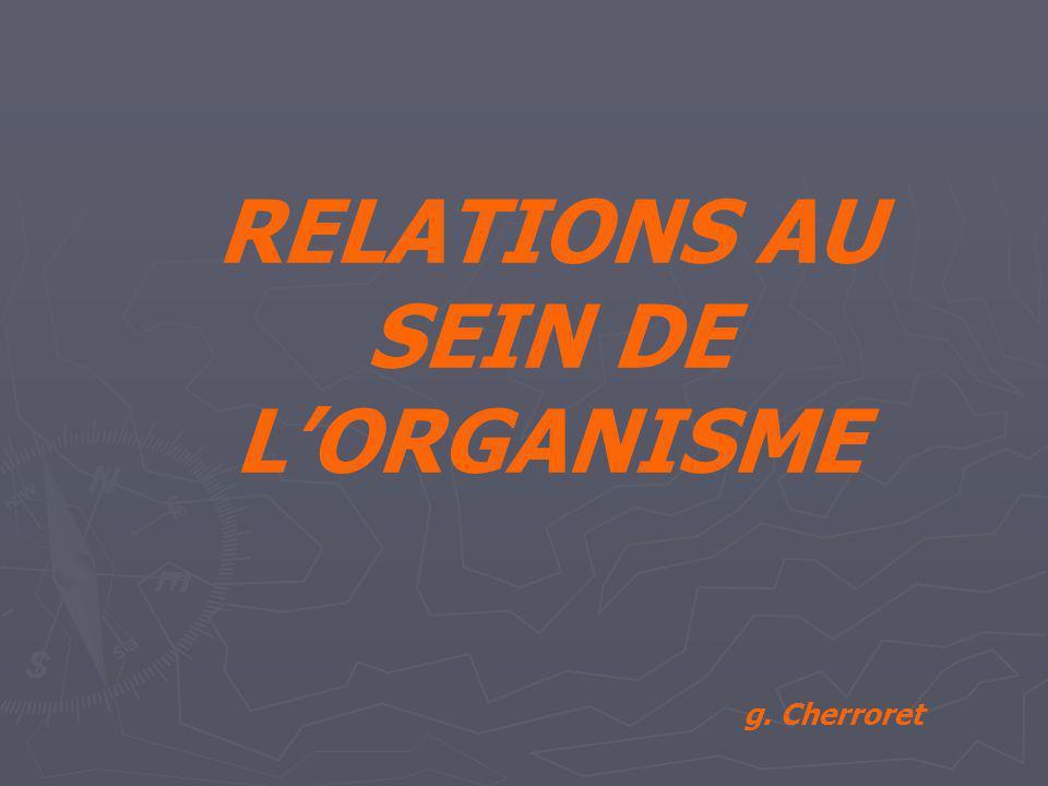 RELATIONS AU SEIN DE L'ORGANISME