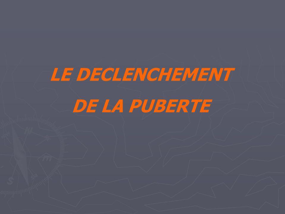 LE DECLENCHEMENT DE LA PUBERTE