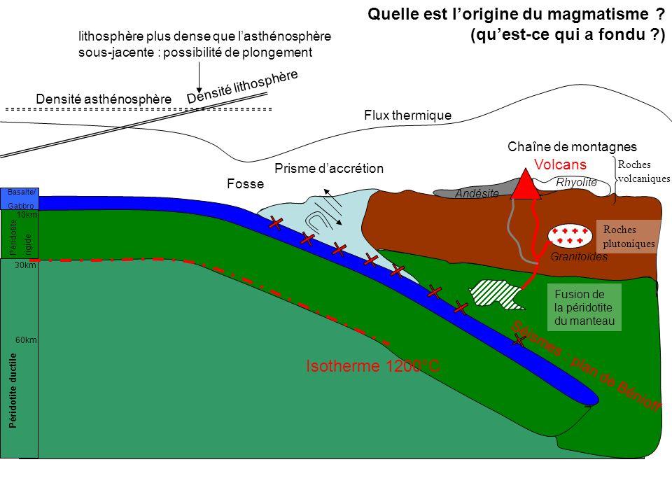 Quelle est l'origine du magmatisme (qu'est-ce qui a fondu )