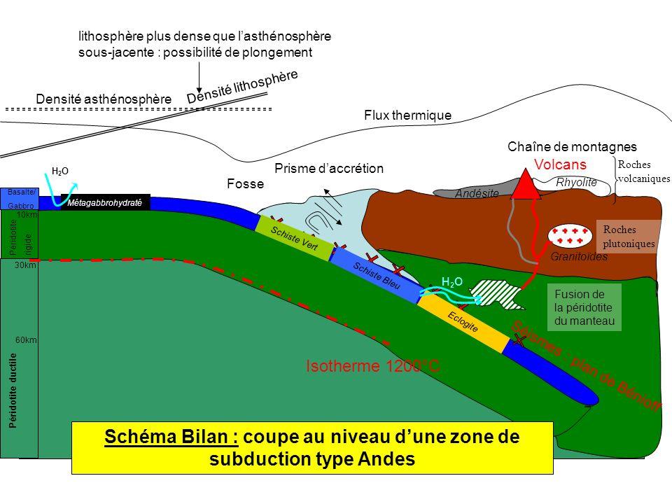 Schéma Bilan : coupe au niveau d'une zone de subduction type Andes