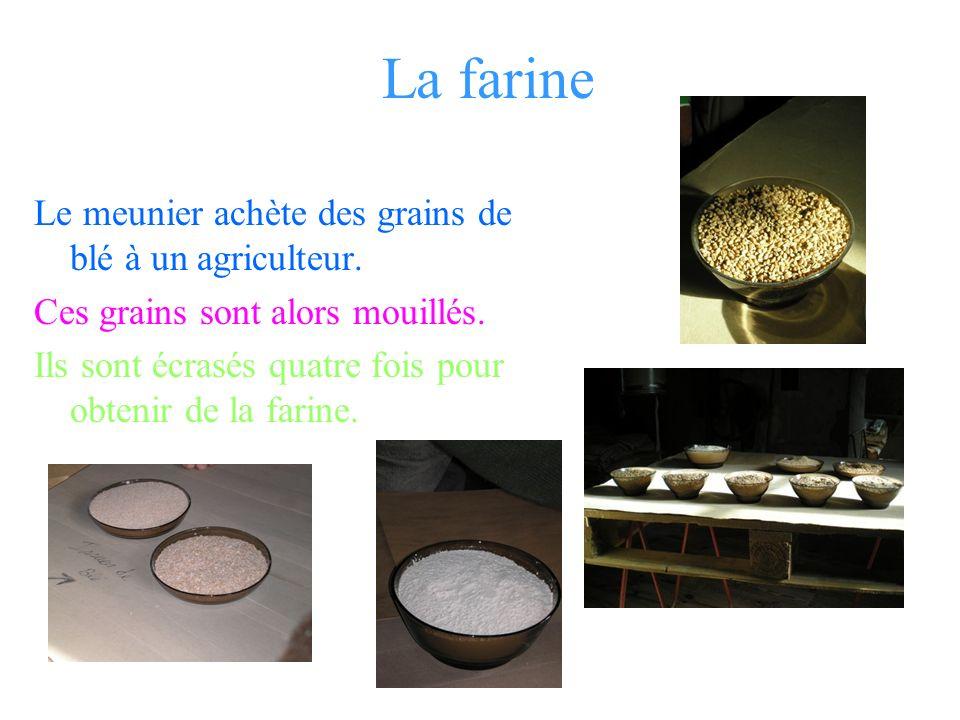 La farine Le meunier achète des grains de blé à un agriculteur.
