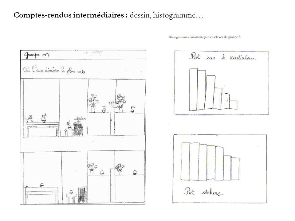 Comptes-rendus intermédiaires : dessin, histogramme…