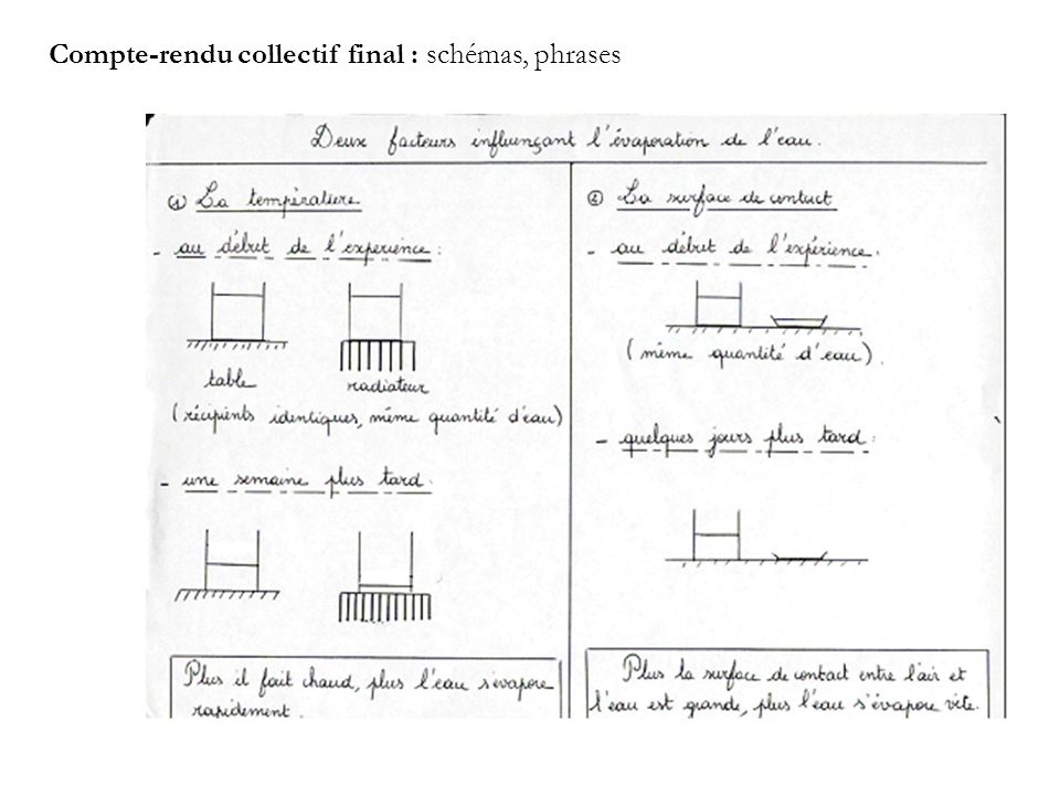 Compte-rendu collectif final : schémas, phrases