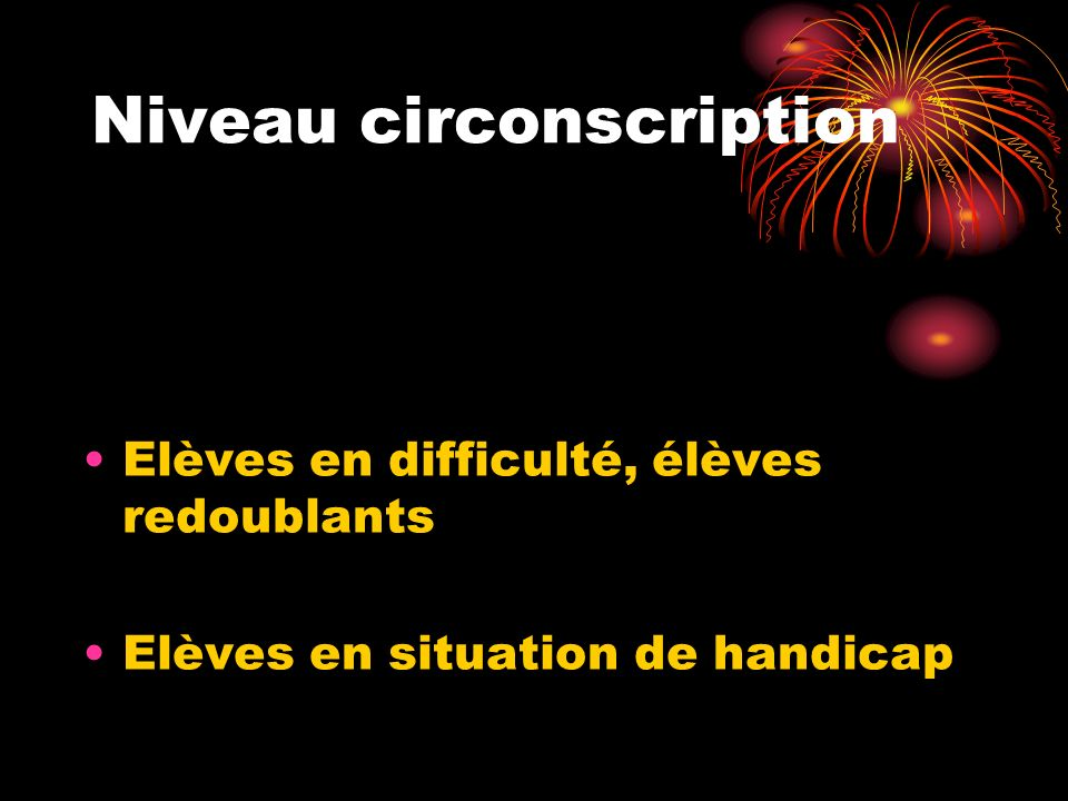Niveau circonscription