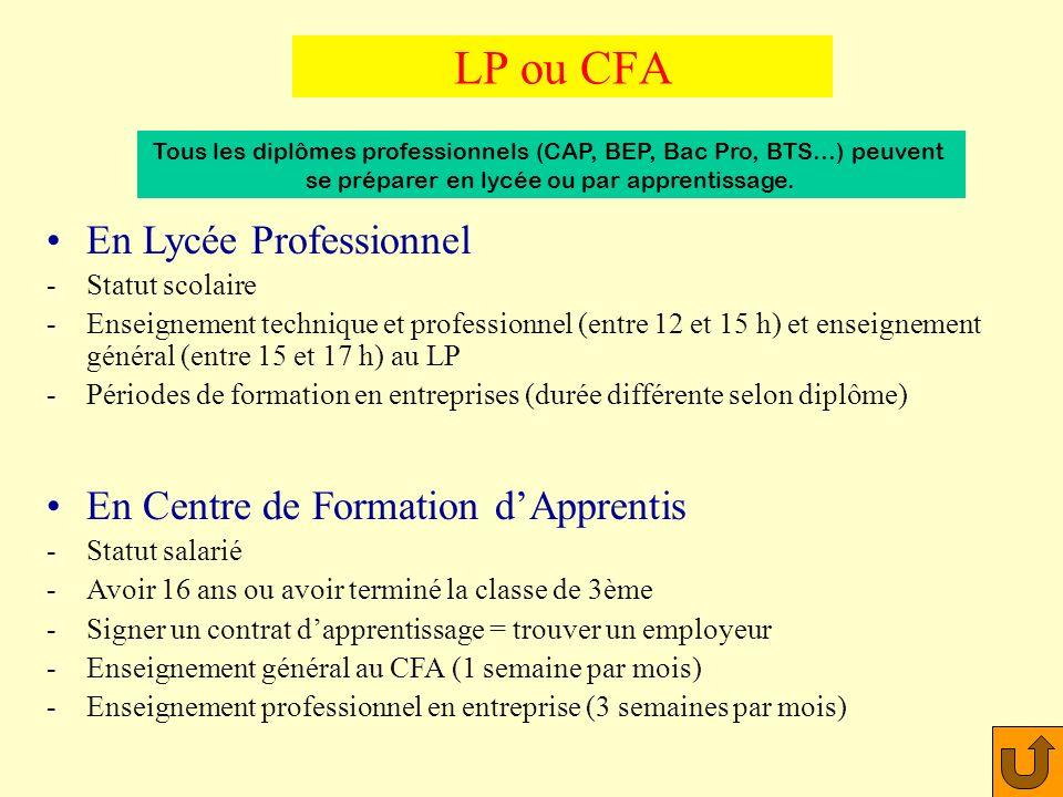 LP ou CFA En Lycée Professionnel En Centre de Formation d'Apprentis